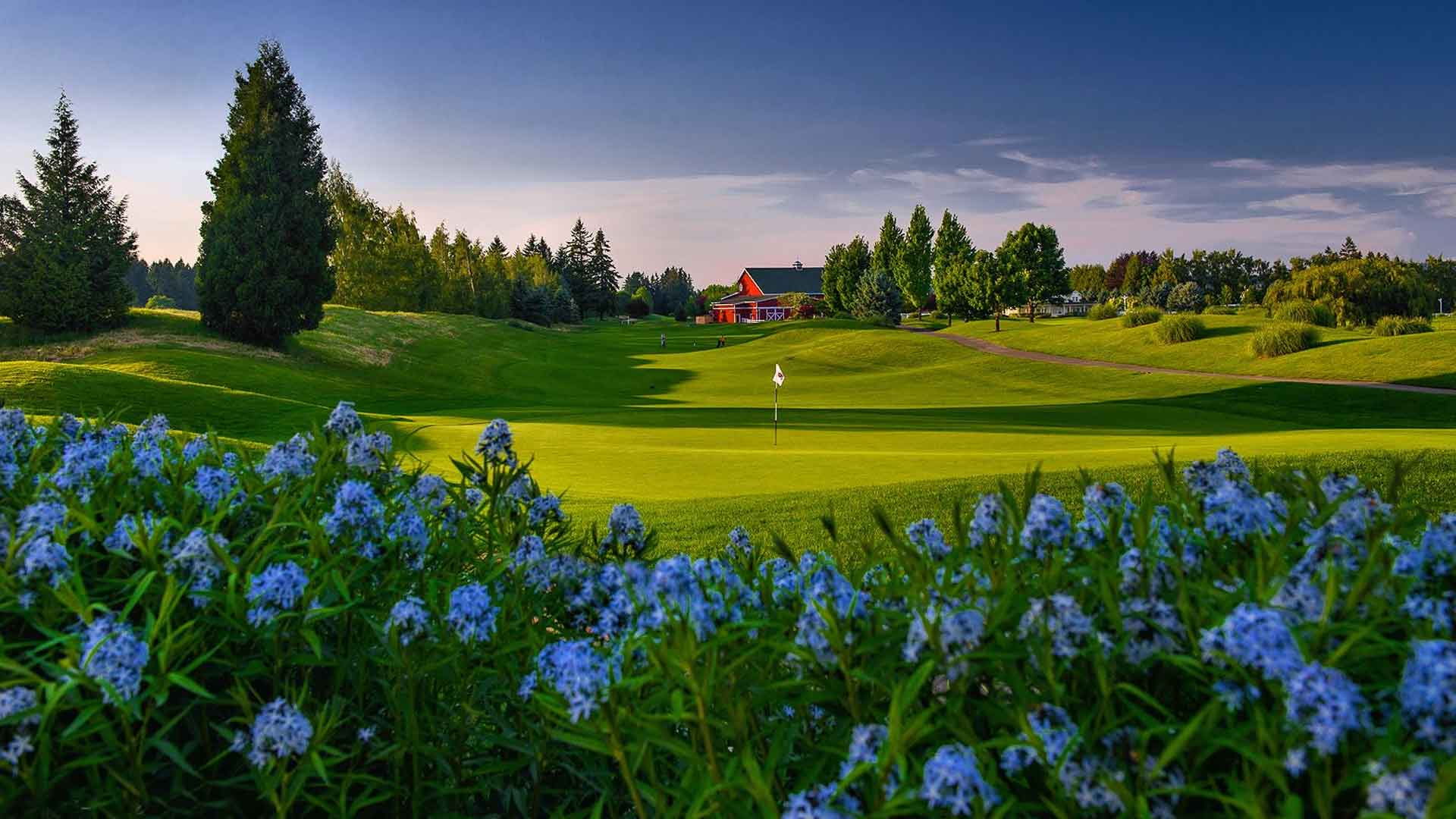 Langdon Farms Daily Deal Tee Times