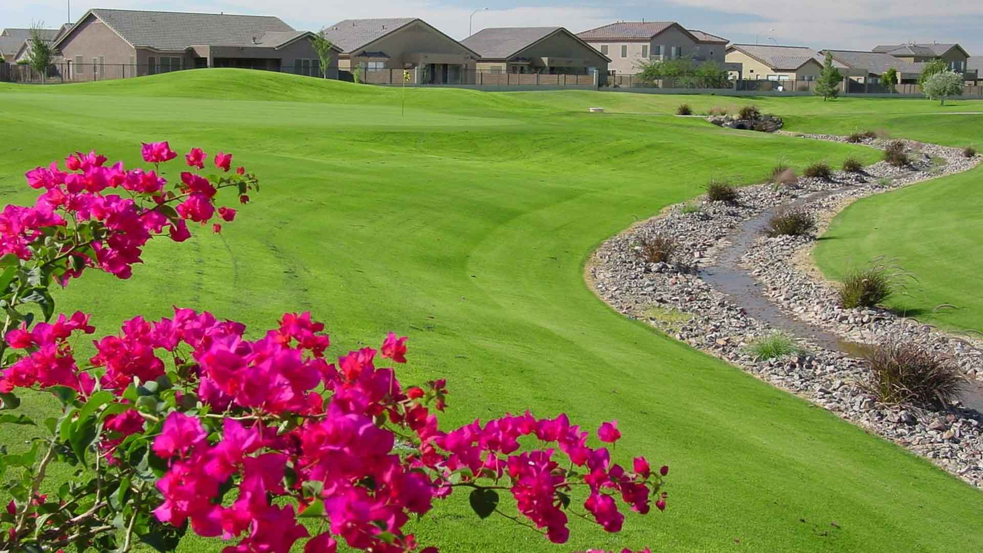 Augusta Ranch Daily Deal Tee Times