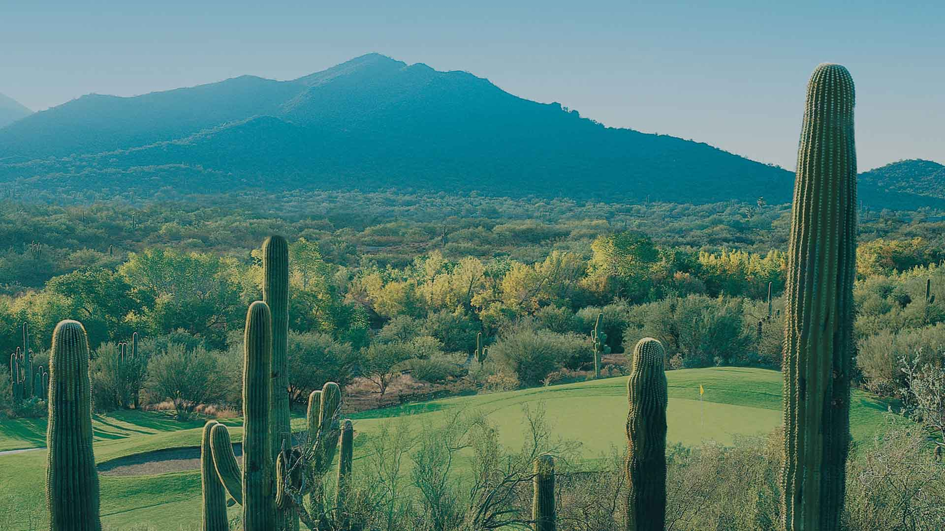 Rancho Manana Daily Deal Tee Times