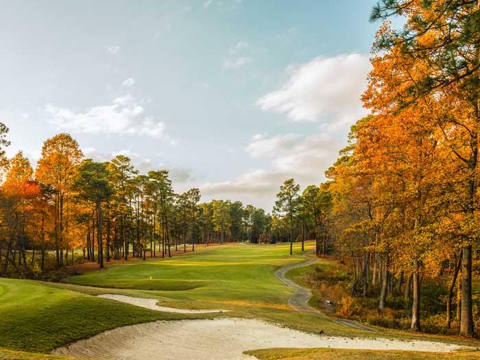 North Carolina Courses