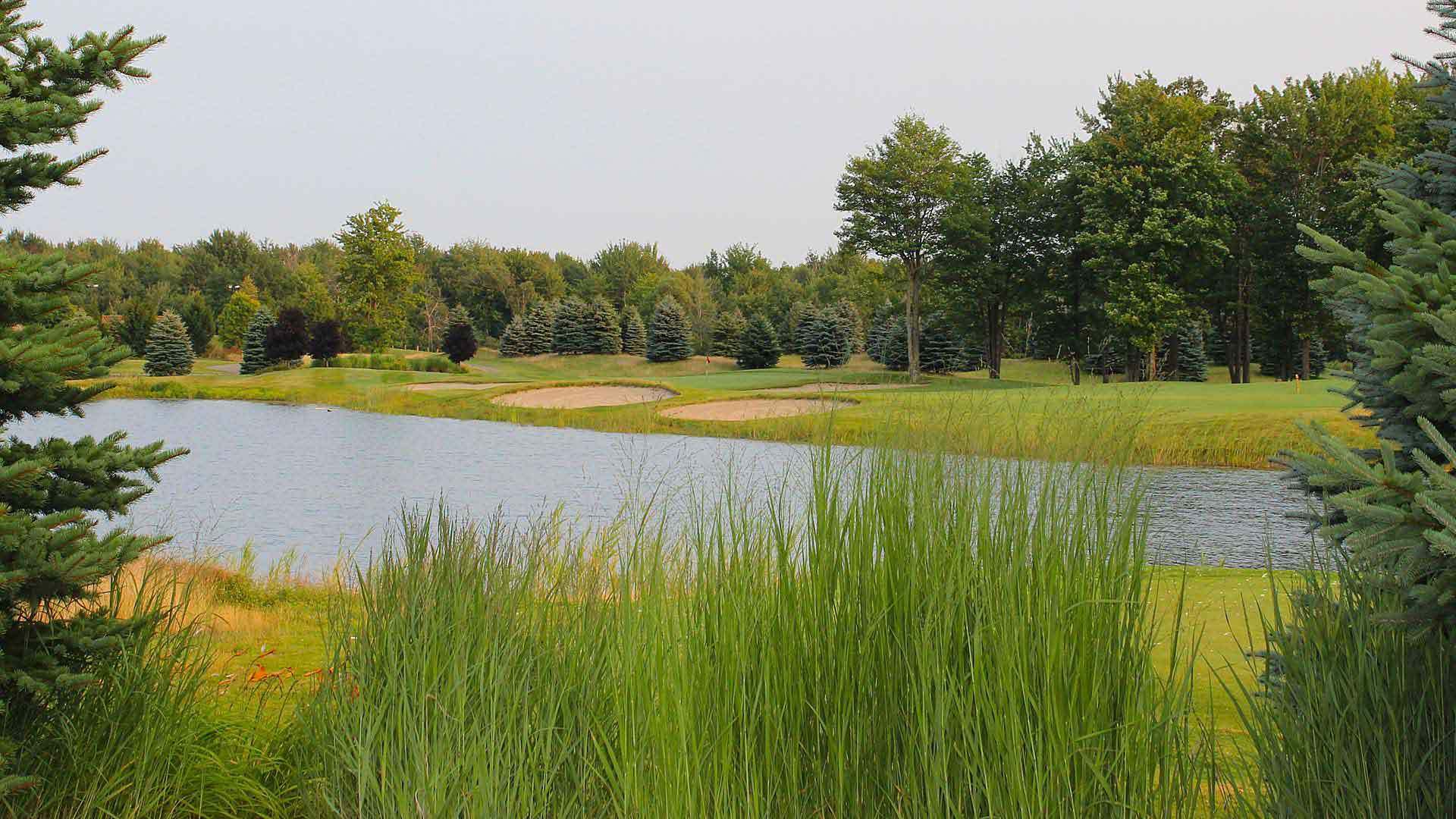 Solitude Links Golf Course Daily Deal Tee Times